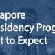 singapore e-residency